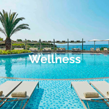Wellness Contract