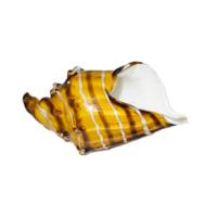 edg-conchiglia-vetro-gialla