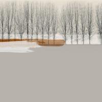 glamora-novembrina-forma-design